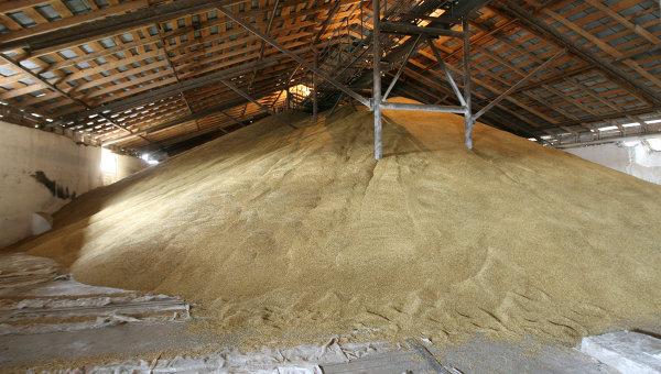 Giá xuất khẩu lúa mì Nga ổn định do lo ngại thời tiết khô